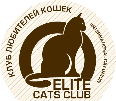 клуб кошек Elite cats club